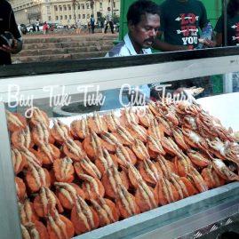 colombo bay tuk tuk city tour